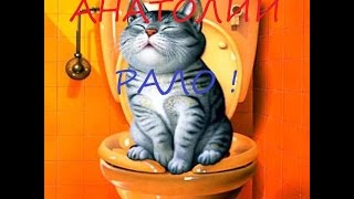 НАСАДКА НА УНИТАЗ ДЛЯ КОШКИ СВОИМИ РУКАМИ. АНАТОЛИЙ РАЛО. NOZZLE ON THE TOILET BOWL FOR THE CAT THE