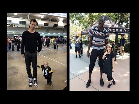 The World's Tallest Man Meets The World's Shortest Woman