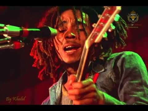 Zion Train - BOB MARLEY and The Wailers (Live Dortmund 1980 Germany)