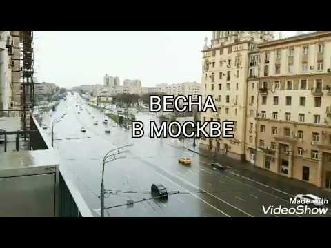 Велопробегом по карантинной Москве