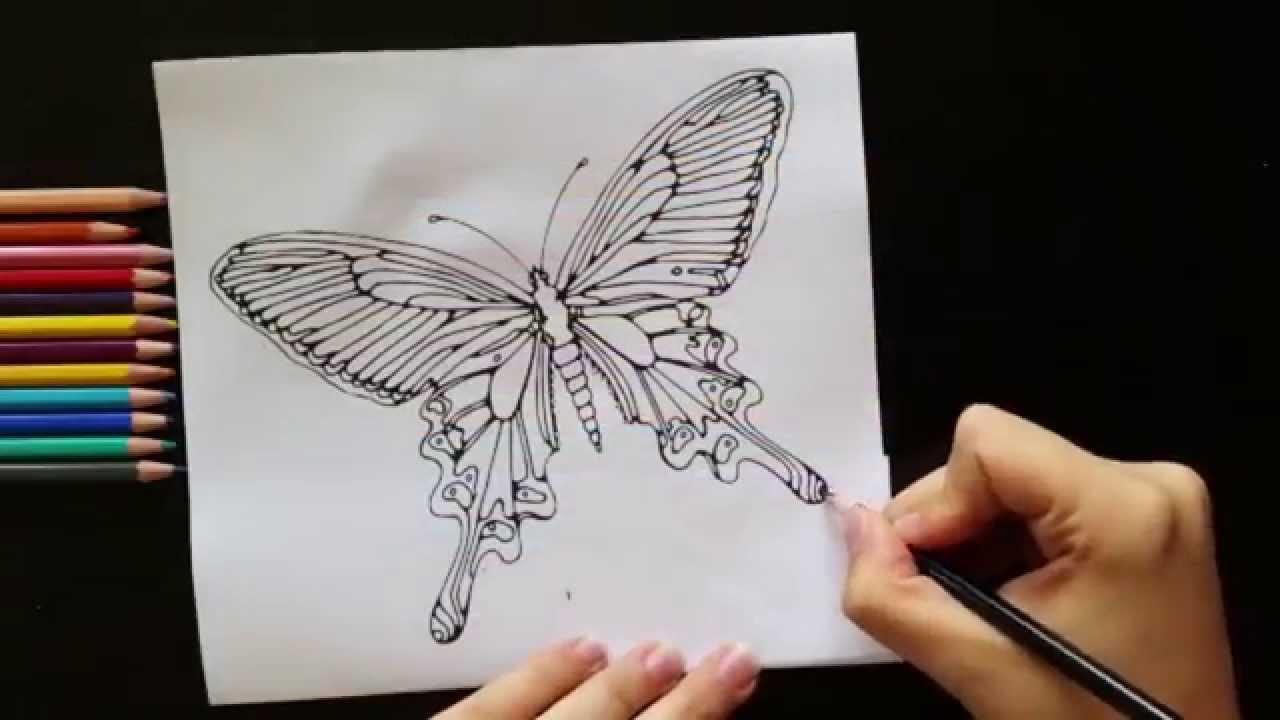 Vlinder Kleuren Met Aquarel-effect