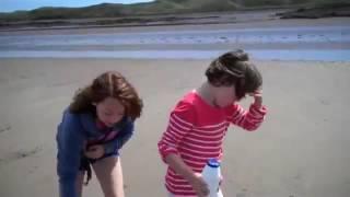 Дети насыпают соль в ямку в песке. То, что оттуда вылезло, сначала испугало.