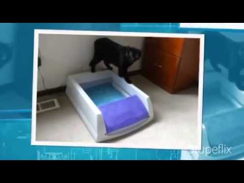 scoopfree litter tray refills with premium blue crystals review - Scoopfree Litter Box