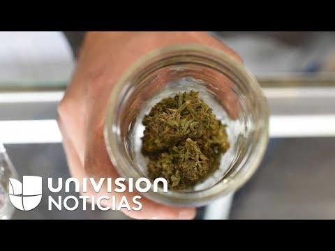 Popular Videos - California & Legality of cannabis