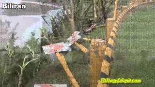 Super Typhoon Yolanda batters Biliran