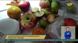 Жамбыл облысында 100 тоннаға жуық жүк Қырғызстанға кері қайтарылды