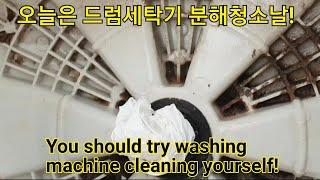 엘지 드럼세탁기 분해청소 어렵지 않아요! LG WD-1…