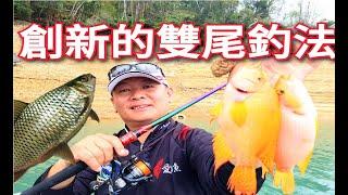 顛覆傳統!!這個釣法真是稀奇!!一日釣300條魚不是問題!!!