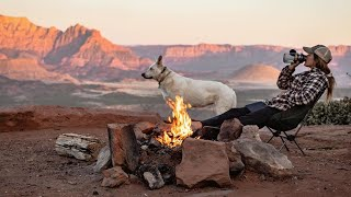 VAN LIFE with a DOG | A Day In The Life | The Desert