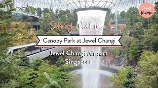 Canopy Park at Jewel Changi