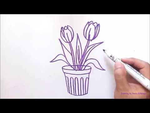 Gambar Bunga Tulip Dalam Pot Untuk Ilustrasi Anak Youtube