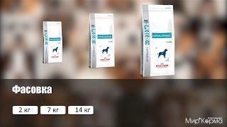 Обзор корма Royal Canin Hypoallergenic DR21