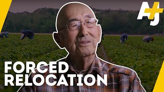 What Happened to Japanese-American Farmers? | AJ+