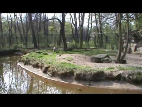 Tierpark Berlin, deel4