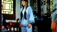 Kung Fu Movies (Old School 1960s 1970s and 1980s China and