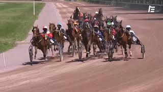 Vidéo de la course PMU PRIX DE THURY HARCOURT