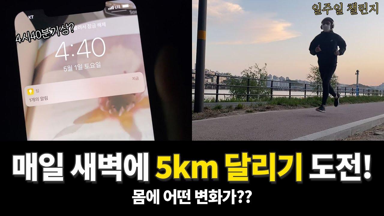 일주일챌린지_매일 새벽 5km를 뛰면 생기는 변화는?