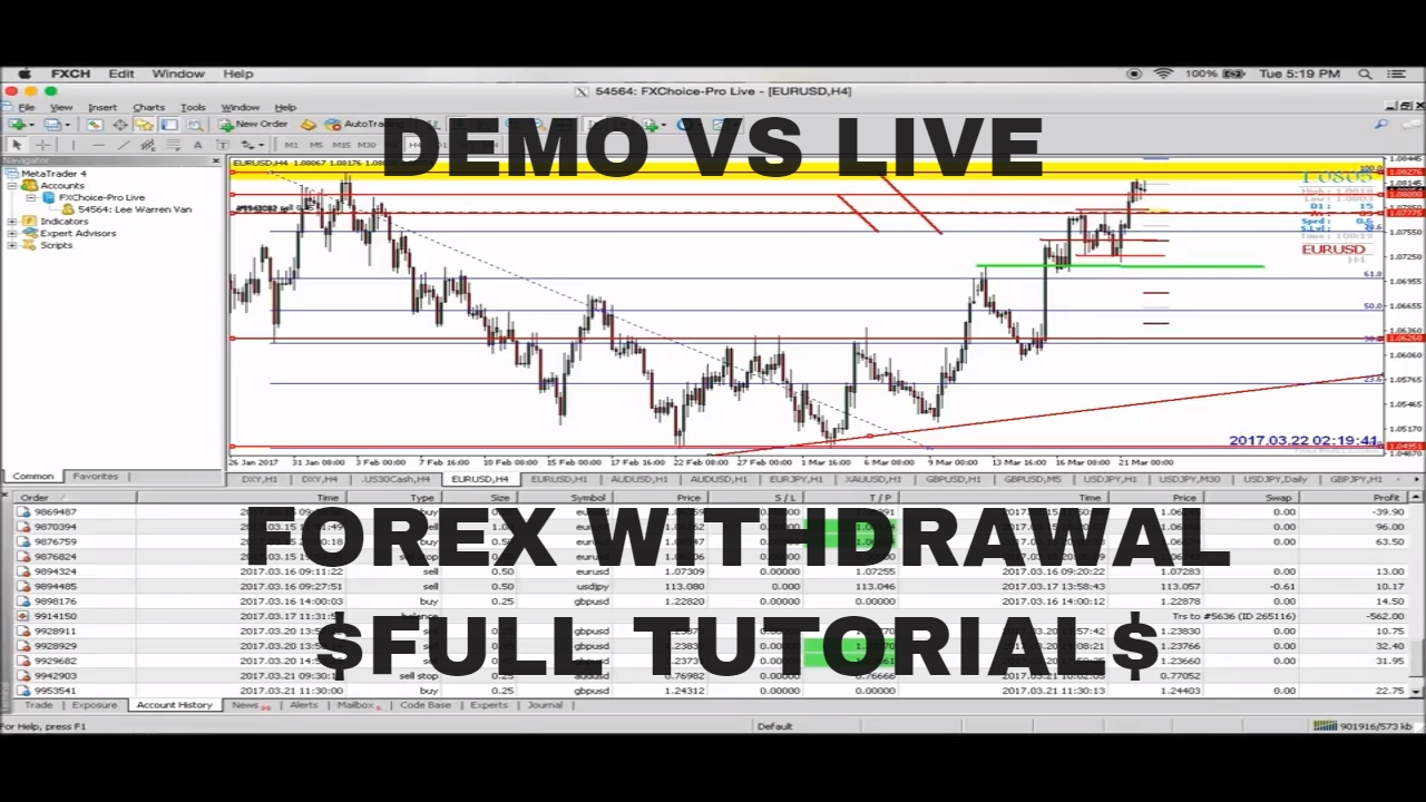 Tutorial forex demo