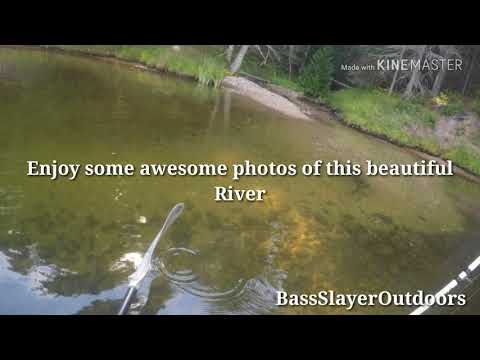 Ausable River/ Alcona Pond Kayak Fishing Trip ( With YAkMob)