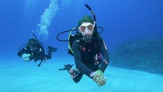 Scuba Sarah - Diving the 7 Continents
