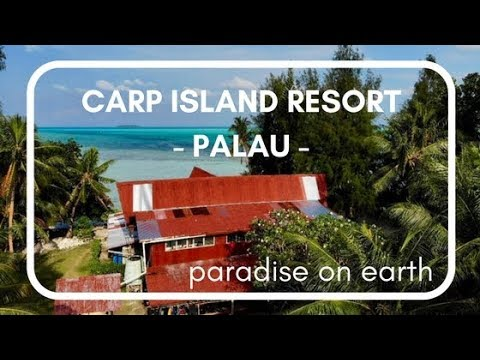 ForSomethingMore - Palau Carp Island Resort