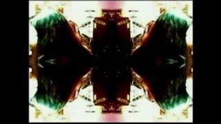 Kermit von Wirtnix - Roll Over Lay Down - with Past Tense