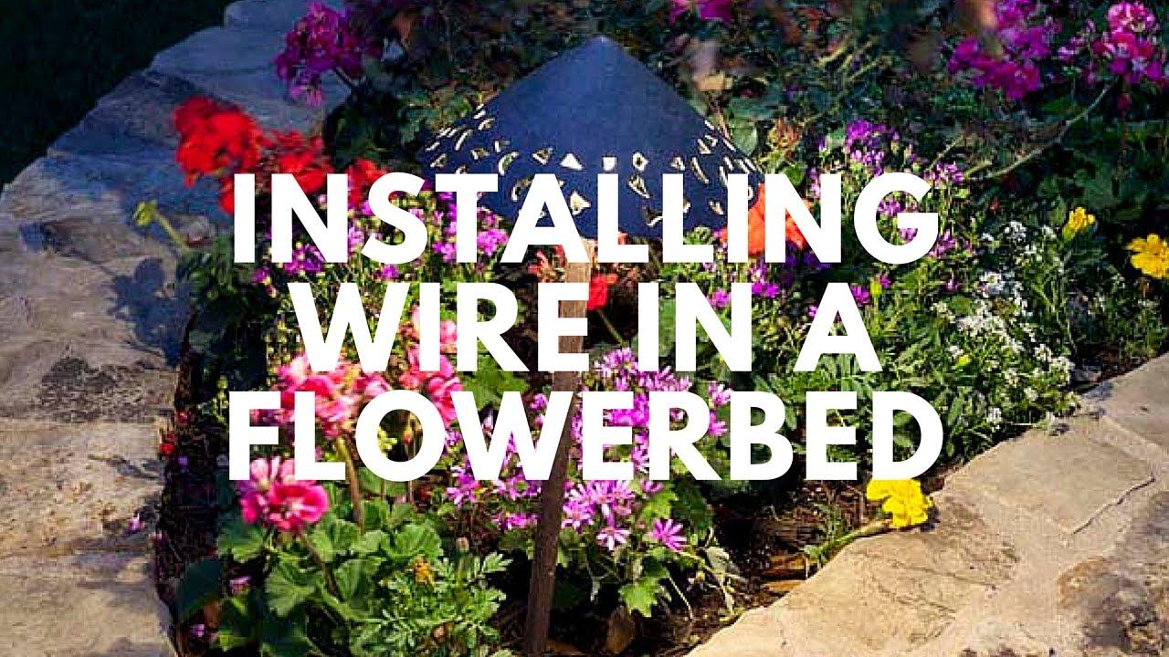 installing landscape lighting wire in a flowerbed area lighting flower bed