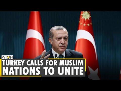 Turkey calls for Muslim nations to unite against Israel | Recep Tayyip Erdogan | Israel-Palestine