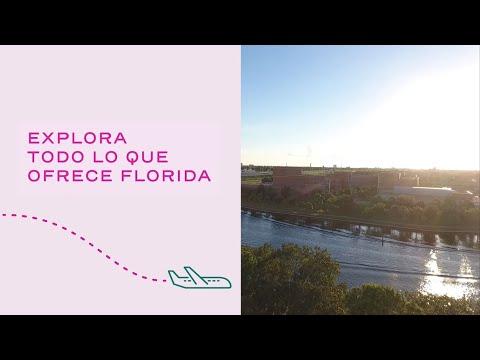 Explora todo lo que ofrece Florida