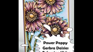 Power Poppy Gerbra Daisies Colouring Video | Flower Colouring with Copic markers