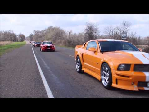 Northside Mustang Car Club Annual Cruise