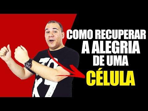 COMO RECUPERAR A ALEGRIA DE UMA CÉLULA QUE DESANIMOU? - BRUNO MONTEIRO