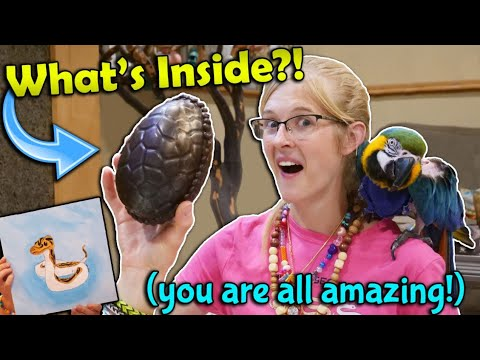 A Dinosaur Egg in our Mail?! (Fan Mail Part 13)