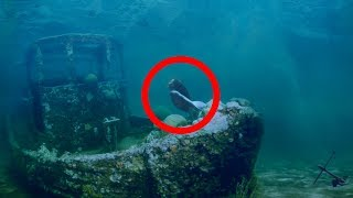 Meerjungfrauen Die Wahrheit hinter dem Mythos