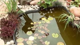 видео Пластиковый пруд: как выбрать и установить водоем своими руками на даче