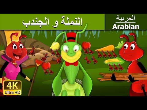 النملة و الجندب | قصص اطفال | حكايات عربية