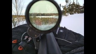 свд/тигр стрельба на 800 м и 1 км svd / tiger shooting at 800 m. 1 km