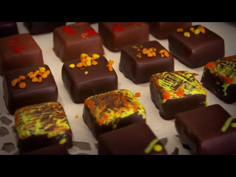 Les meilleurs chocolatiers du monde sont corses - Météo à la carte