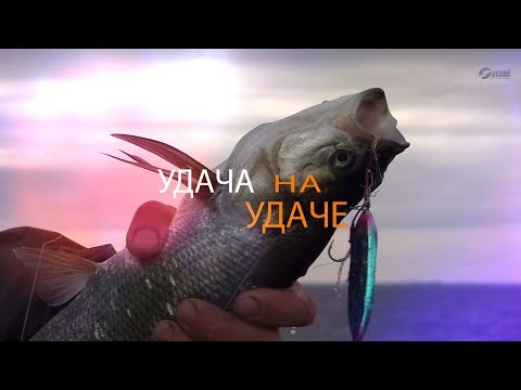 Удача на Удаче  Рыболовная база Удача Рыбалка в Самаре