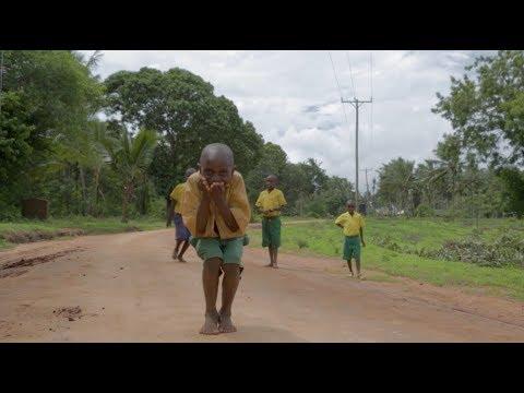 Reforestation in Kenya - One Tree Planted and Komaza Partnership