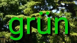 Im Park, Deutsch lernen, Learn German, Vokabeln, Wortschatz A1, A2, B1, B2 Freizeit, Prüfung