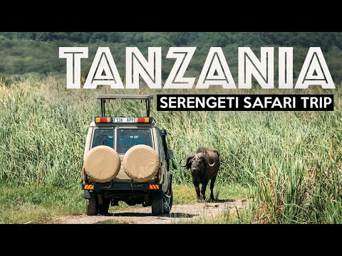 TANZANIA SAFARI - Exploring The Serengeti