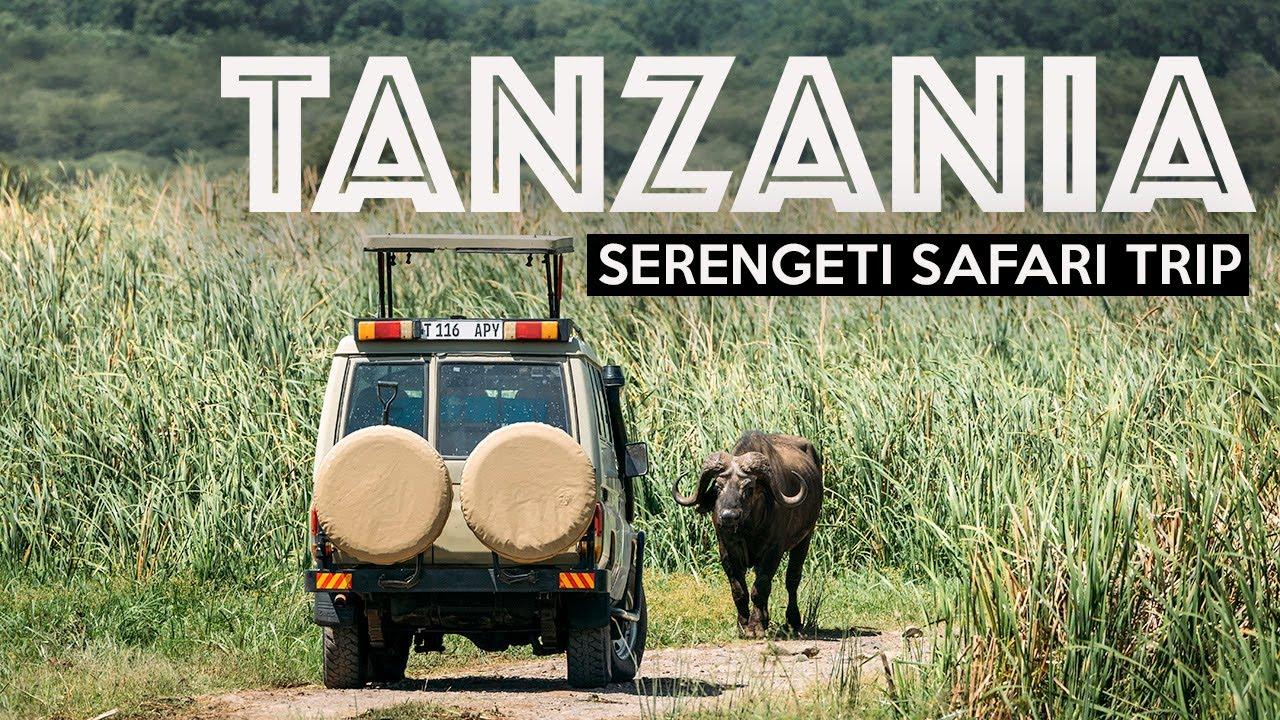 TANZANIA SAFARI | Exploring The Serengeti