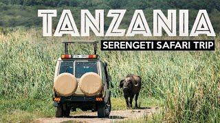 TANZANIA SAFARI  Exploring The Serengeti