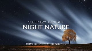 Night Nature ⚛  Relaxing Forest Sounds with 174 Hz for Positive Energy Healing