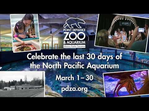 End of an Era: Closing the North Pacific Aquarium