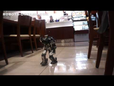 Thunderbolt Robot Unique Walking Gait