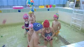 Урок плавания в детском саду