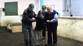 Little Bits Therapeutic Riding Association (Edmonton, AB, Canada)