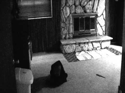 Darrel Atkin Jr.'s film noir